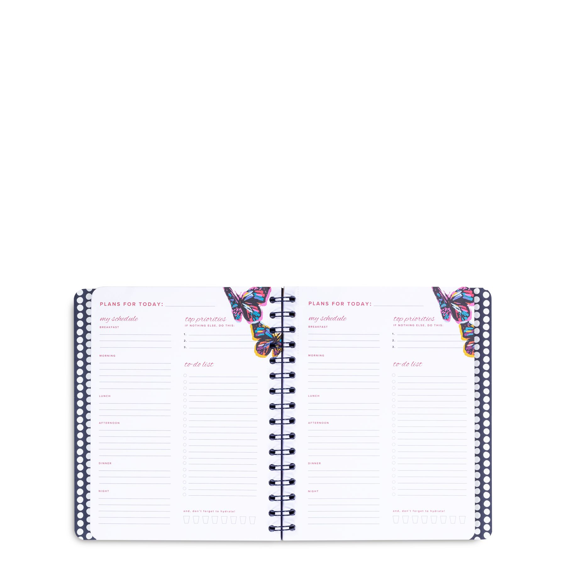 photo about Daily Agenda Planners known as Day-to-day Planner Vera Bradley