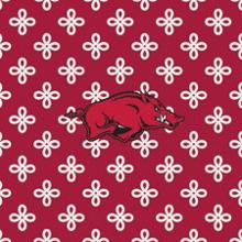 05cc97ce0d Cardinal White Mini Concerto with Arkansas Logo