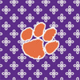 Purple/White Mini Concerto with Clemson University Logo