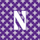 Purple/White Mini Concerto with Northwestern University Logo