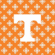 Orange/White Mini Concerto with University of Tennessee Logo