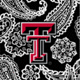 Black/White Bandana with Texas Tech University Logo
