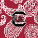 Cardinal/White Bandana with University of South Carolina Logo
