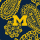 Navy/Gold Bandana with University of Michigan Logo