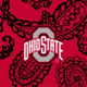Red/Black Bandana with The Ohio State University Logo