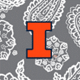 Gray/White Bandana with University of Illinois Logo